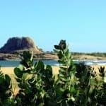 Beautiful scenery of Yala National Park