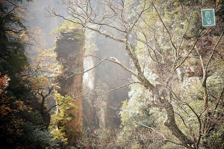 The Floating Hallelujah Mountains in Zhangjiajie.