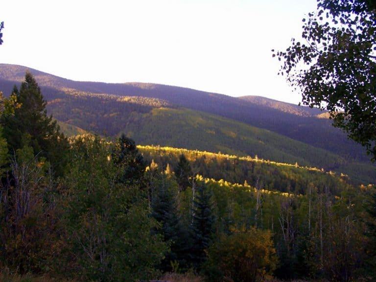 A view while hiking near Santa Fe, photo Steve Collins (1)