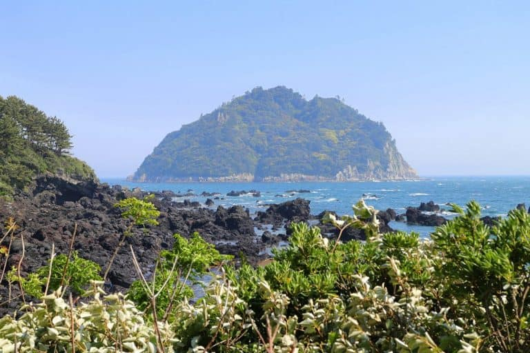 olle-trail-view-jeju-island