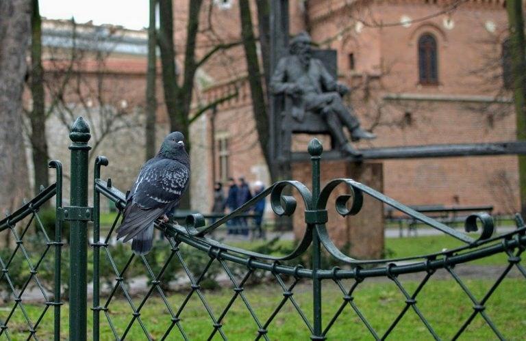 Planty Park In Krakow